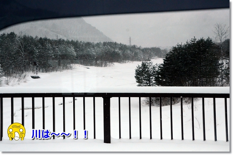 DSC_6966夏遊んだaの川が・・・嘘~