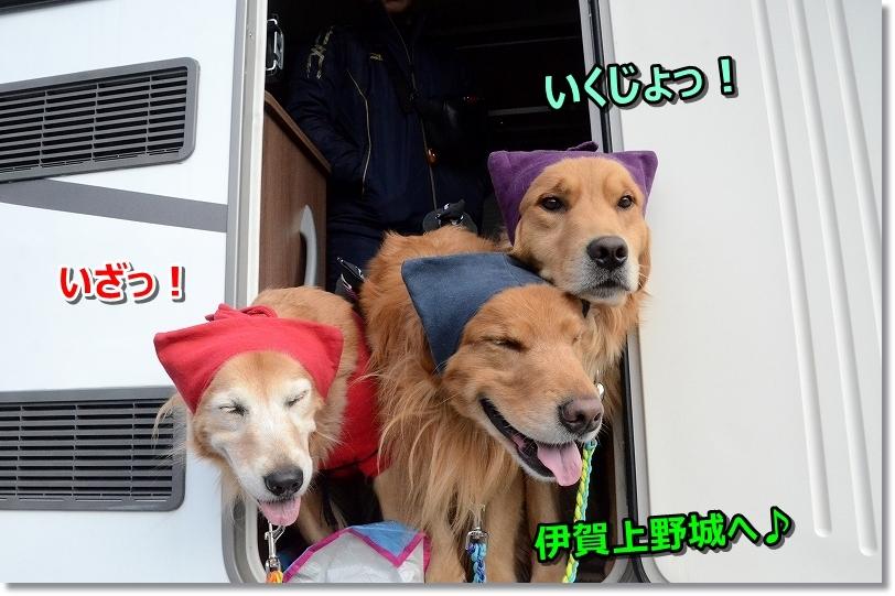DSC_596いざ!上野城へきりり!5