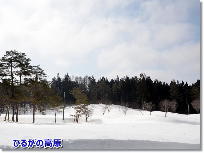 DSC_765touchaku9.jpg