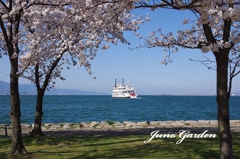 琵琶湖岸180331