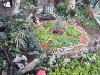 2018-01-14花と泉の公園ベゴニア館185