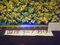 2018-02-28千厩雛祭重箱石011