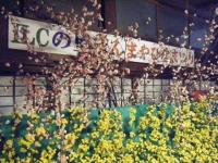 2018-02-28千厩雛祭重箱石007