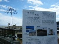 2018-03-10重箱石7年目の被災地65