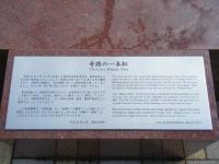 2018-03-10重箱石7年目の被災地78
