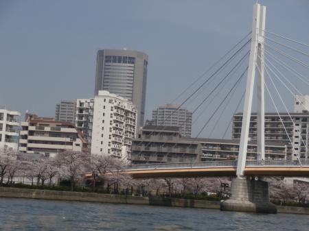 舟からの写真Ⅰ