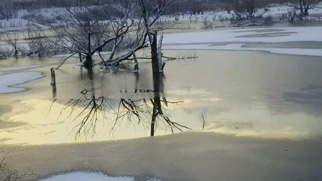 写真ダム湖6