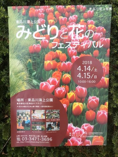 fesuharu3.jpg