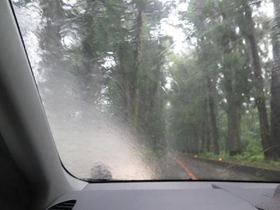 日光、雨の杉並木