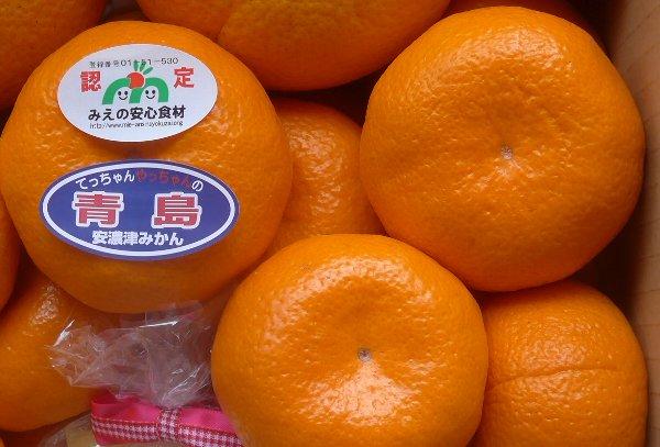 500青島