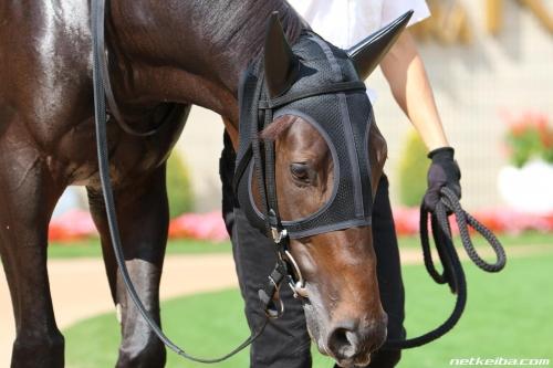 【競馬ネタ】武幸四郎調教師、デビュー戦からずっと乗ってる水口が乗ってる馬をルメールにスイッチ