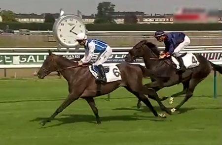 【競馬】フランスでディープインパクトの血を広げるハズだったアキヒロさん去勢されていたwwww