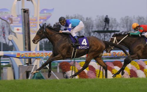 【競馬】カンパニーって馬のレース見てたんだけど 8歳でG1連勝は凄いな!