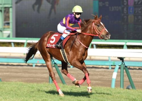 【競馬】日本一有名な未勝利馬「ヘヴィータンク」引退