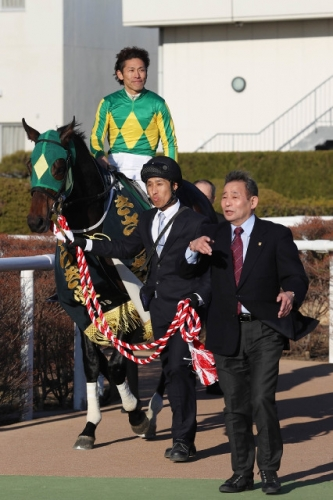 【競馬】きさらぎ賞優勝のサトノフェイバーが右前じん帯炎症で春全休