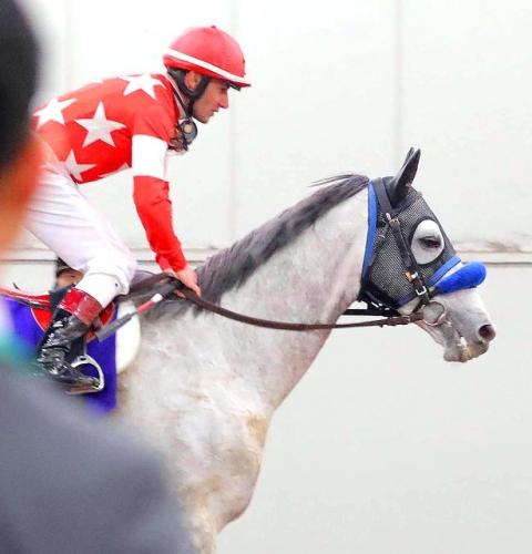 【競馬】日経賞ルメール、マーチS横山、高松宮記念デムーロ どれが一番糞騎乗?