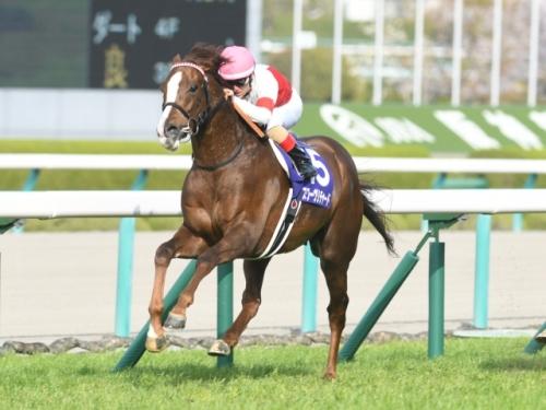 【レース回顧】第62回 大阪杯(GⅠ) 反省会