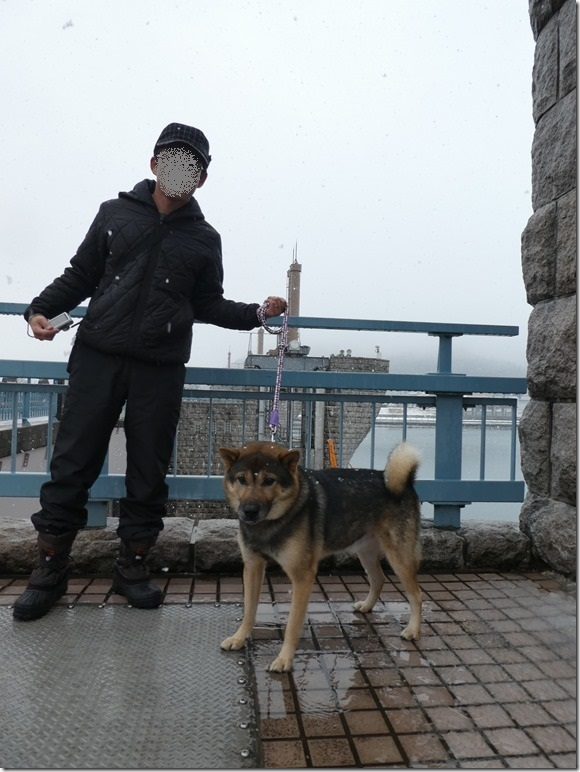20171217福井雪03-26