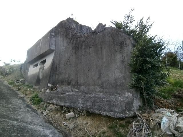 雲辺寺原観的その2 (6)