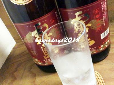 20180329_赤霧島