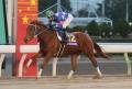 180215モダンウーマン引退・東京2歳優駿牝馬