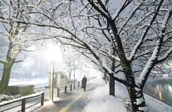 4681-340福岡雪化粧