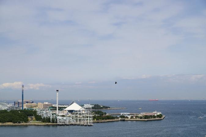 DSC01907野島