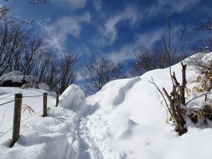 登り上げたところの雪庇