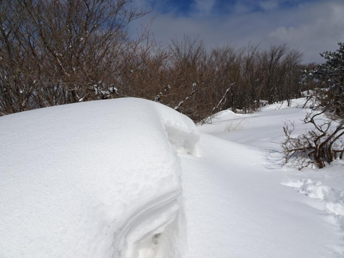 稜線道の雪庇