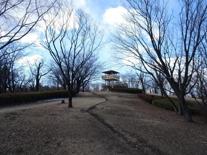 さくら山展望台