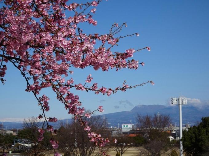 背景は赤城山
