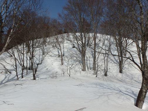 3.13暖日山 042_R