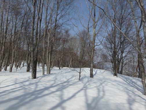 3.13暖日山 053_R
