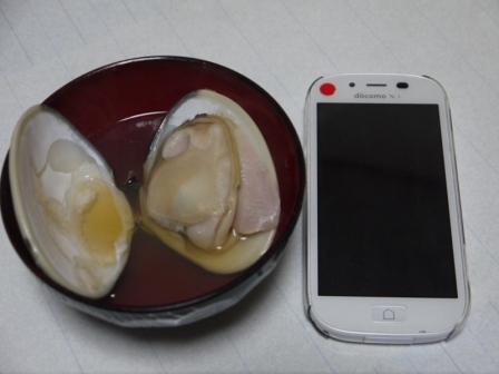 P1680335.jpg