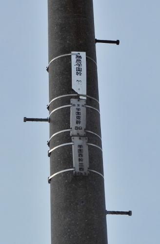 酪農学園 電柱