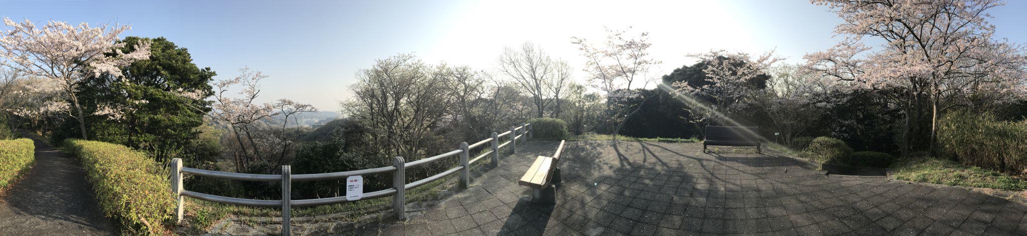 富士見台パノラマ1