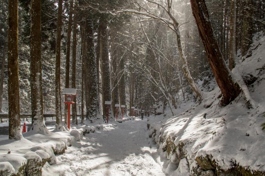 雪の貴船散歩2 (2)