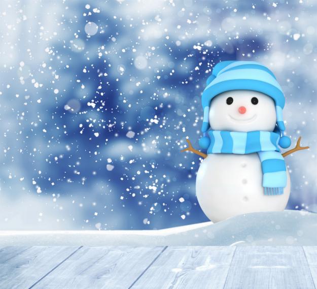snowman-2995146_1280.png