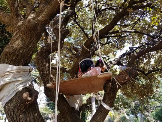 木の上に秘密基地を作りました。