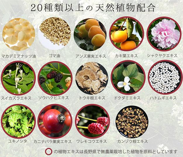 アルテ オーガニックハンドクリーム 配合植物