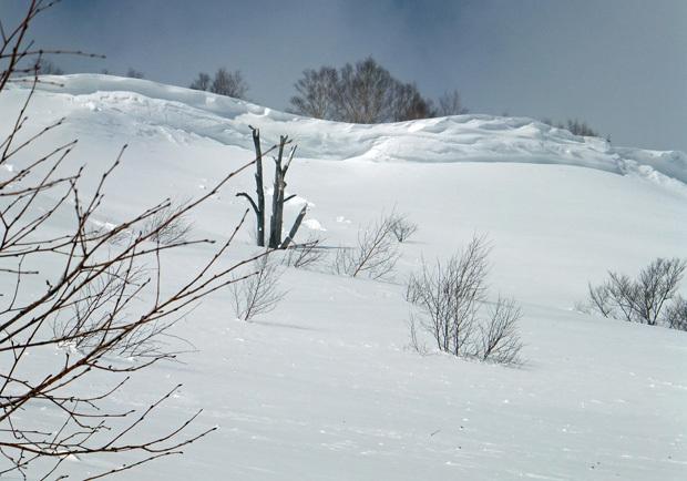 八幡平エリア雪崩情報 気温上昇、積雪増加(3/3)