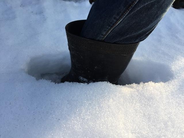 雪はまだこんなに深い