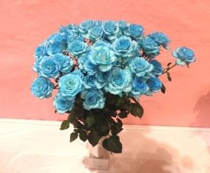 水色のバラ