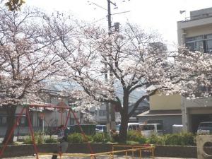 朝日町公園1