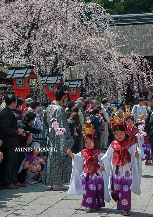 平野神社 桜祭神幸祭 お稚児さん