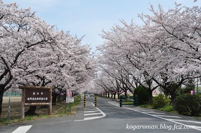 14藤岡渡良瀬運動公園