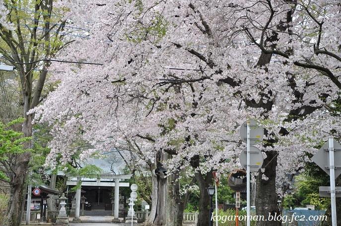 12野木神社