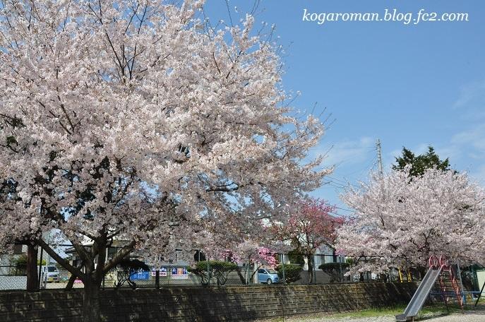 10桃公園