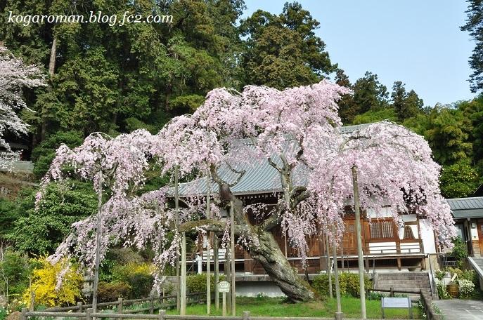 09太山寺