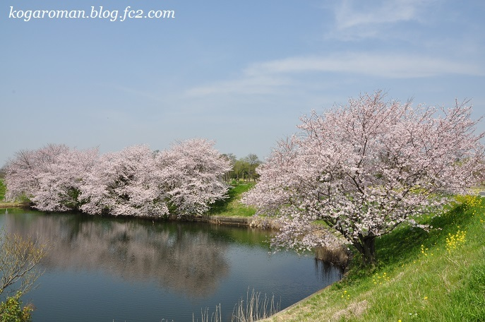 06天神池公園